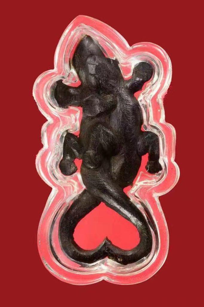 屈班章 龙婆奶 精族 双尾 稀有 有手写符