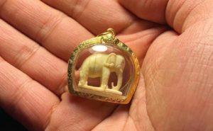 龙婆添2517大象